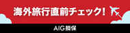 AIG_190x60.png